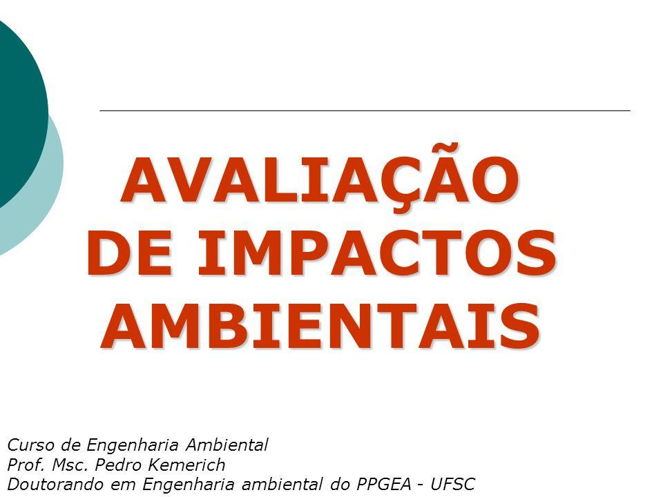 AVALIAÇÃO DE IMPACTOS AMBIENTAIS Curso de Engenharia Ambiental Prof.