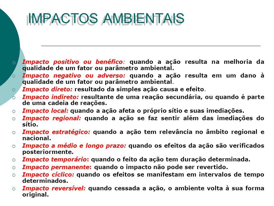 OBJETIVOS DO EIA Proteger o ambiente para as futuras gerações; Proteger o ambiente para as futuras gerações; Garantir a saúde, a segurança e a produtividade do meio-ambiente, assim como seus aspectos estéticos e culturais; Garantir a saúde, a segurança e a produtividade do meio-ambiente, assim como seus aspectos estéticos e culturais; Garantir a maior amplitude possível de usos, benefícios dos ambientes não degradados, sem riscos ou outras conseqüências indesejáveis; Garantir a maior amplitude possível de usos, benefícios dos ambientes não degradados, sem riscos ou outras conseqüências indesejáveis; Preservar importantes aspectos históricos, culturais e naturais de nossa herança nacional; manter a diversidade ambiental; Preservar importantes aspectos históricos, culturais e naturais de nossa herança nacional; manter a diversidade ambiental; Garantir a qualidade dos recursos renováveis; introduzir a reciclagem dos recursos não renováveis; Garantir a qualidade dos recursos renováveis; introduzir a reciclagem dos recursos não renováveis; Permitir uma ponderação entre os benefícios de um projeto e seus custos ambientais, normalmente não computados nos seus custos econômicos.