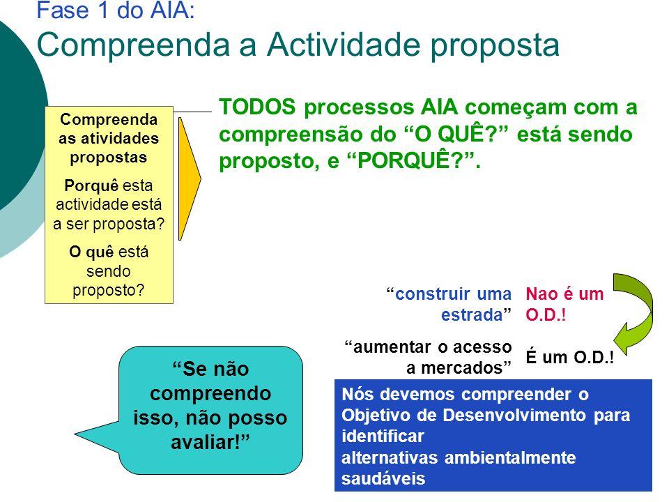 Fase 1 do AIA: Compreenda a Actividade proposta Compreenda as atividades propostas Porquê esta actividade está a ser proposta.