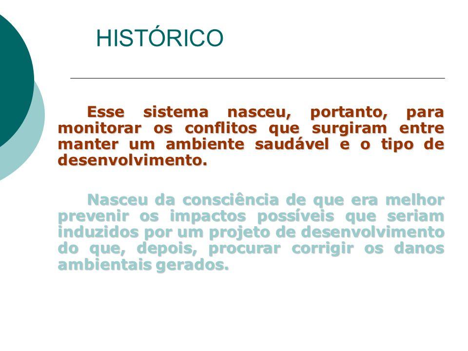 O documento elaborado foi denominado de EIS – Environmental Impact Statement (Declaração de Impacto Ambiental).