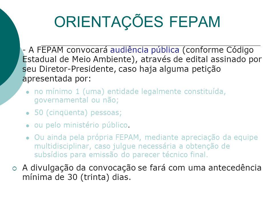 A FEPAM, durante a análise técnica, poderá solicitar complementações do EIA/RIMA.