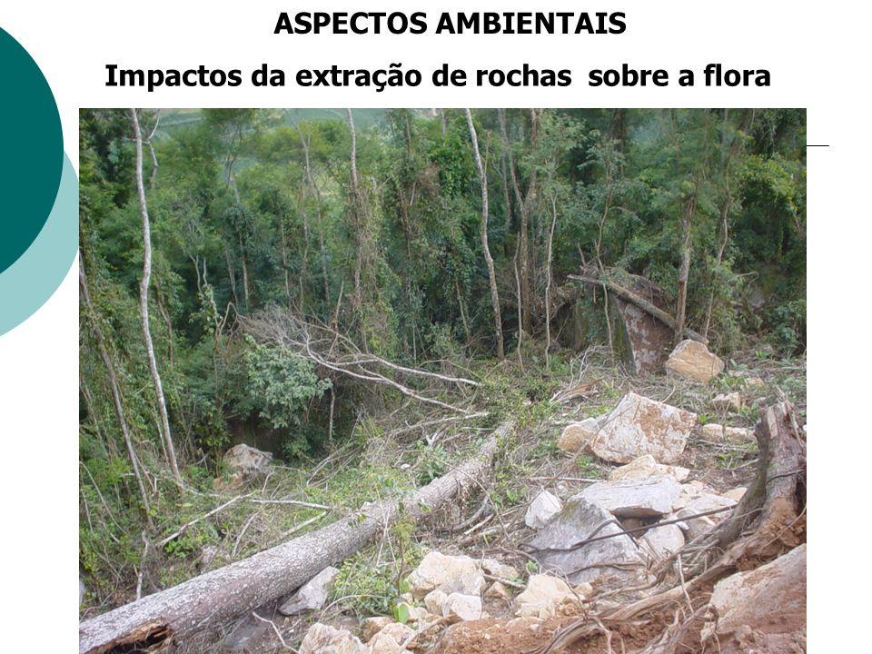 Impactos da extração de rochas Sobre a água ASPECTOS AMBIENTAIS