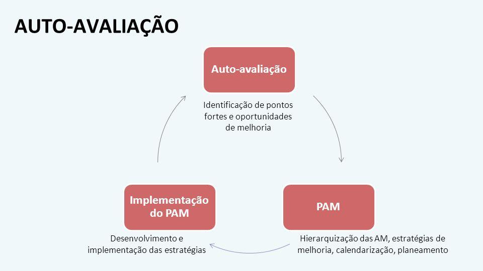 AUTO-AVALIAÇÃO Auto-avaliaçãoPAM Implementação do PAM Identificação de pontos fortes e oportunidades de melhoria Hierarquização das AM, estratégias de