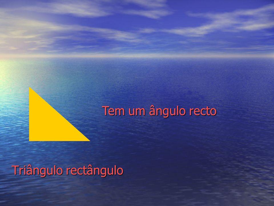 Triângulo rectângulo Tem um ângulo recto
