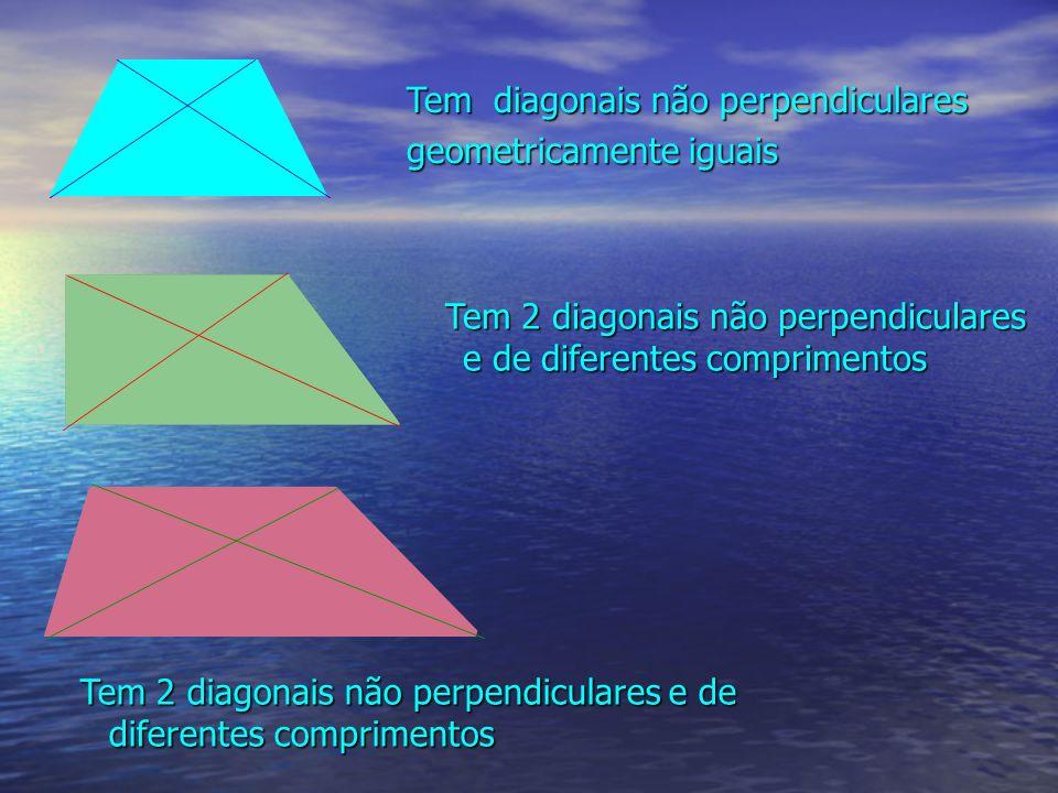 Tem diagonais não perpendiculares geometricamente iguais Tem 2 diagonais não perpendiculares e de diferentes comprimentos Tem 2 diagonais não perpendi