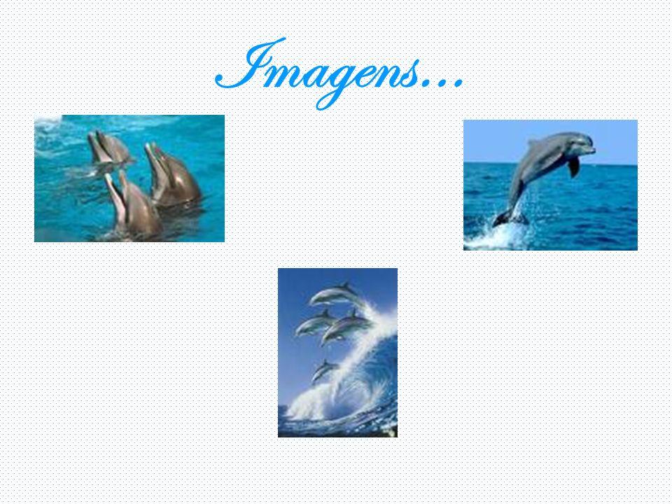 Imagens…
