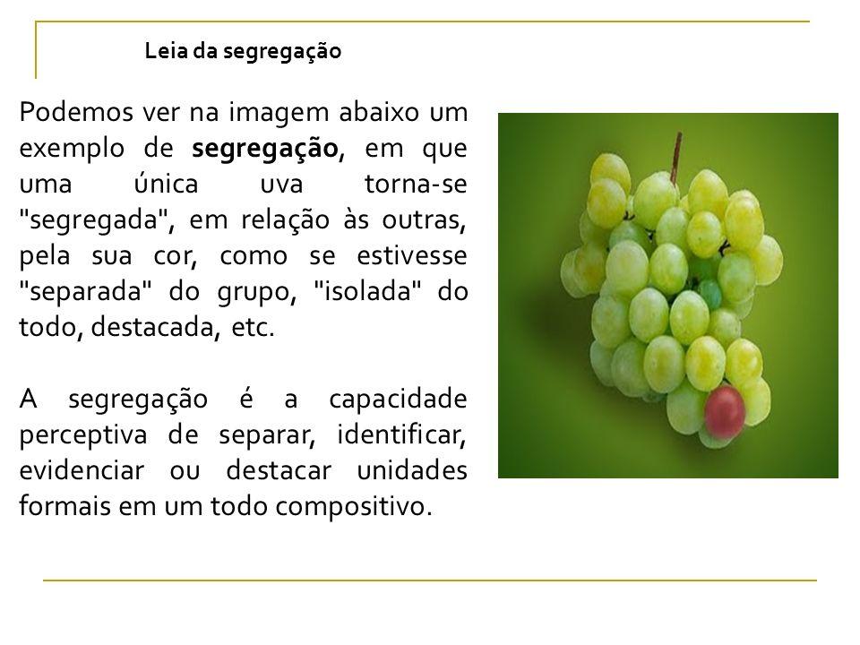 Leia da segregação Podemos ver na imagem abaixo um exemplo de segregação, em que uma única uva torna-se