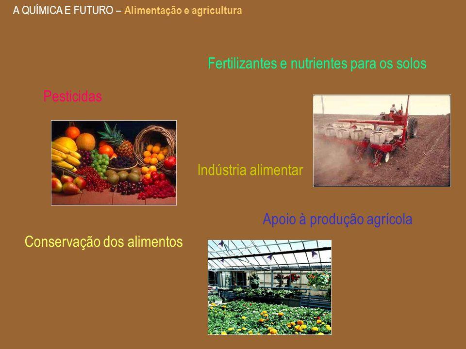 A QUÍMICA E FUTURO – Alimentação e agricultura Indústria alimentar Conservação dos alimentos Pesticidas Apoio à produção agrícola Fertilizantes e nutr