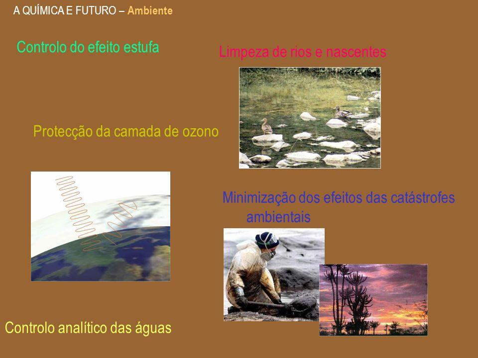 A QUÍMICA E FUTURO – Ambiente Protecção da camada de ozono Controlo analítico das águas Limpeza de rios e nascentes Minimização dos efeitos das catást