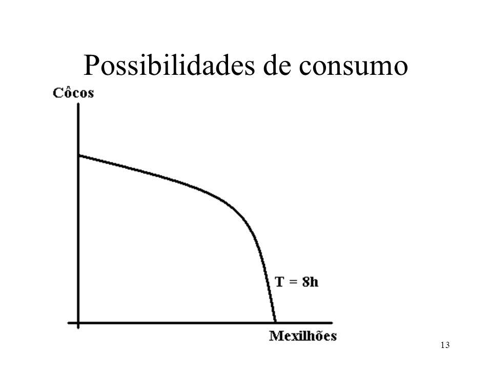 13 Possibilidades de consumo
