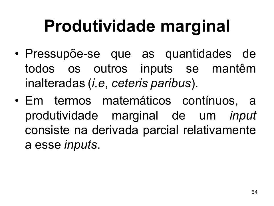 54 Produtividade marginal Pressupõe-se que as quantidades de todos os outros inputs se mantêm inalteradas (i.e, ceteris paribus). Em termos matemático