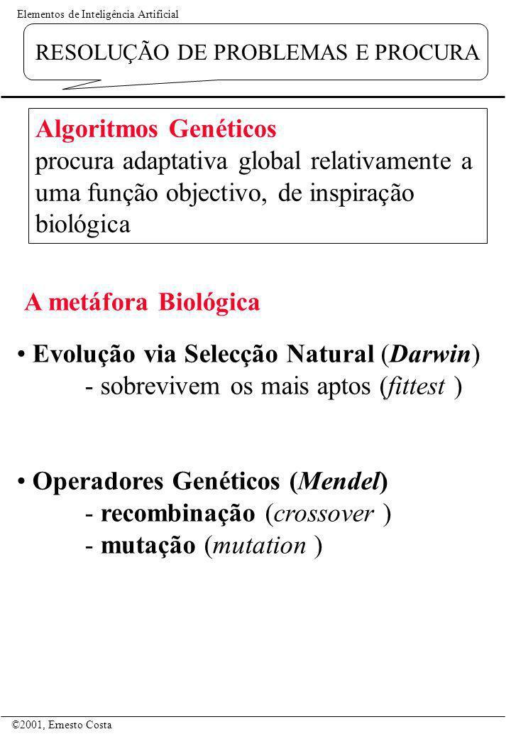 Elementos de Inteligência Artificial ©2001, Ernesto Costa RESOLUÇÃO DE PROBLEMAS E PROCURA Evolução via Selecção Natural (Darwin) - sobrevivem os mais