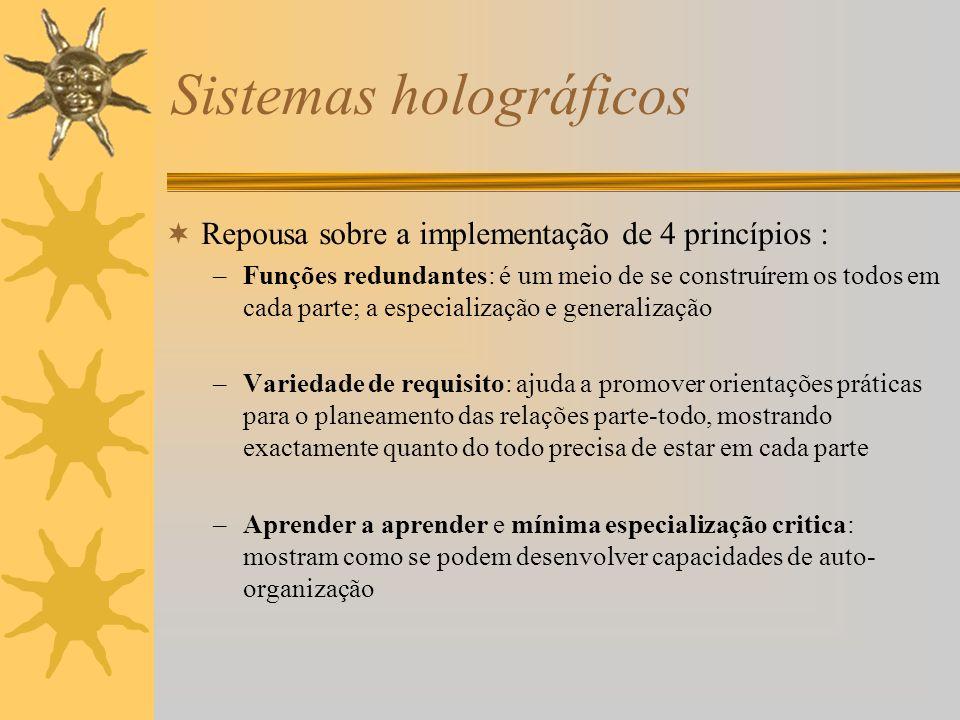 Sistemas holográficos Repousa sobre a implementação de 4 princípios : –Funções redundantes: é um meio de se construírem os todos em cada parte; a espe