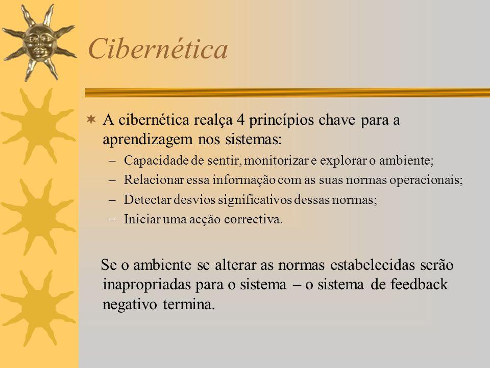 Cibernética A cibernética realça 4 princípios chave para a aprendizagem nos sistemas: –Capacidade de sentir, monitorizar e explorar o ambiente; –Relac