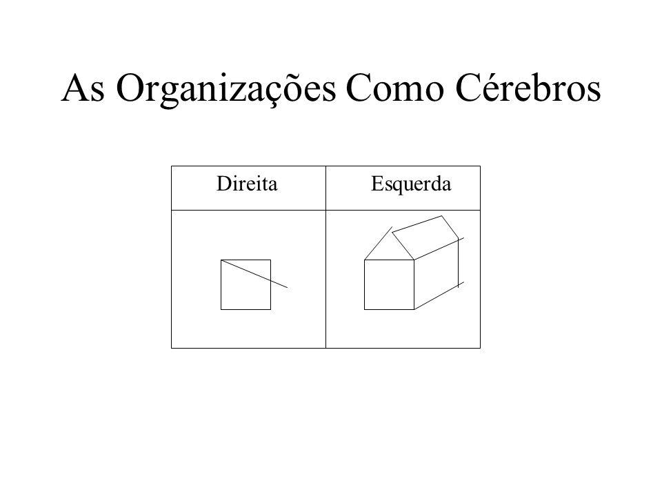 As Organizações Como Cérebros E