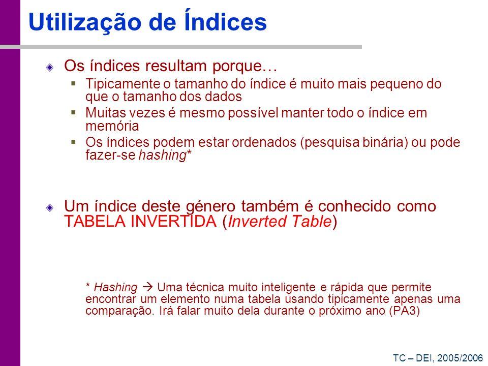 TC – DEI, 2005/2006 Utilização de Índices Os índices resultam porque… Tipicamente o tamanho do índice é muito mais pequeno do que o tamanho dos dados