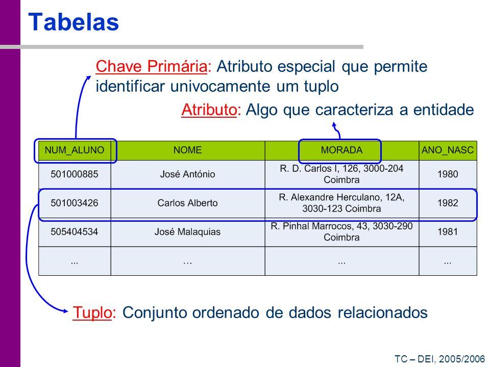 TC – DEI, 2005/2006 Tabelas Tuplo: Conjunto ordenado de dados relacionados Chave Primária: Atributo especial que permite identificar univocamente um t