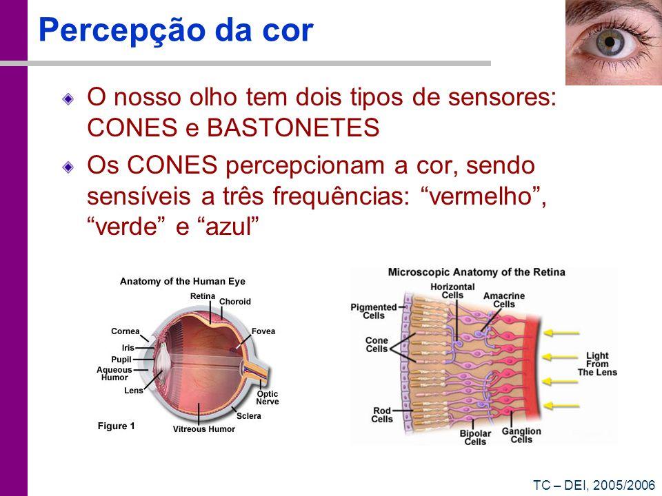 TC – DEI, 2005/2006 Percepção da cor O nosso olho tem dois tipos de sensores: CONES e BASTONETES Os CONES percepcionam a cor, sendo sensíveis a três f