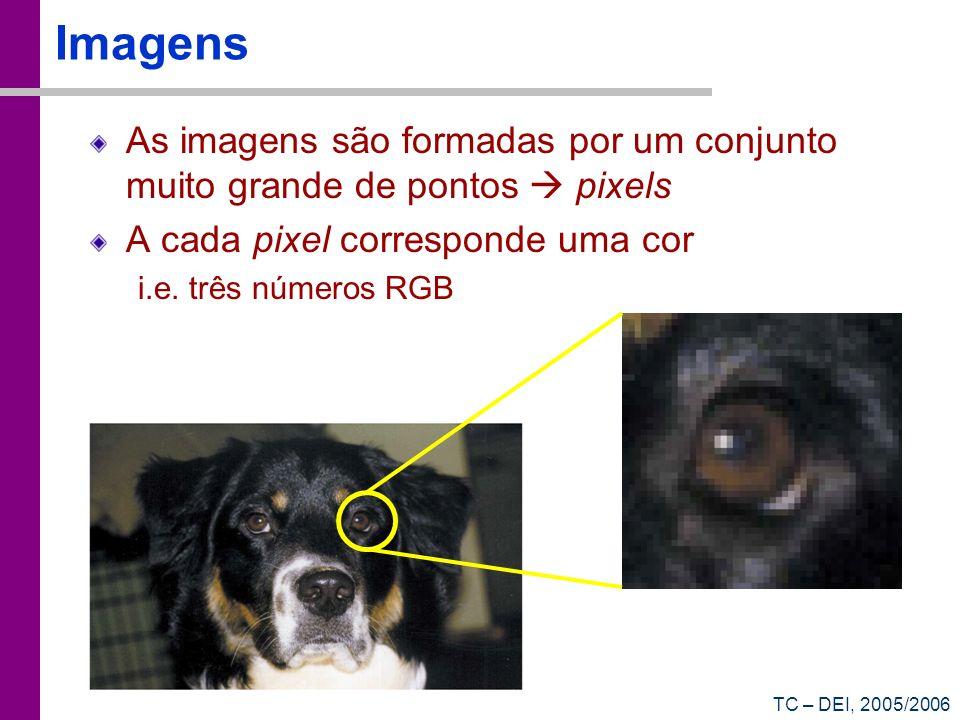 TC – DEI, 2005/2006 Imagens As imagens são formadas por um conjunto muito grande de pontos pixels A cada pixel corresponde uma cor i.e. três números R