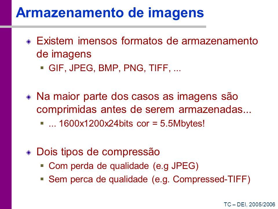 TC – DEI, 2005/2006 Armazenamento de imagens Existem imensos formatos de armazenamento de imagens GIF, JPEG, BMP, PNG, TIFF,... Na maior parte dos cas