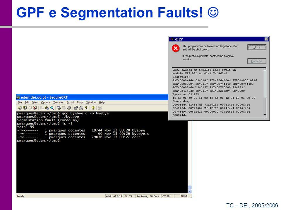TC – DEI, 2005/2006 GPF e Segmentation Faults!