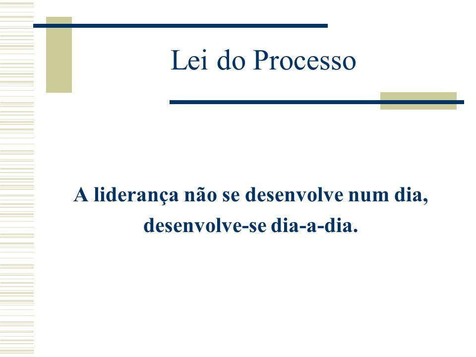 Lei do Processo A liderança não se desenvolve num dia, desenvolve-se dia-a-dia.