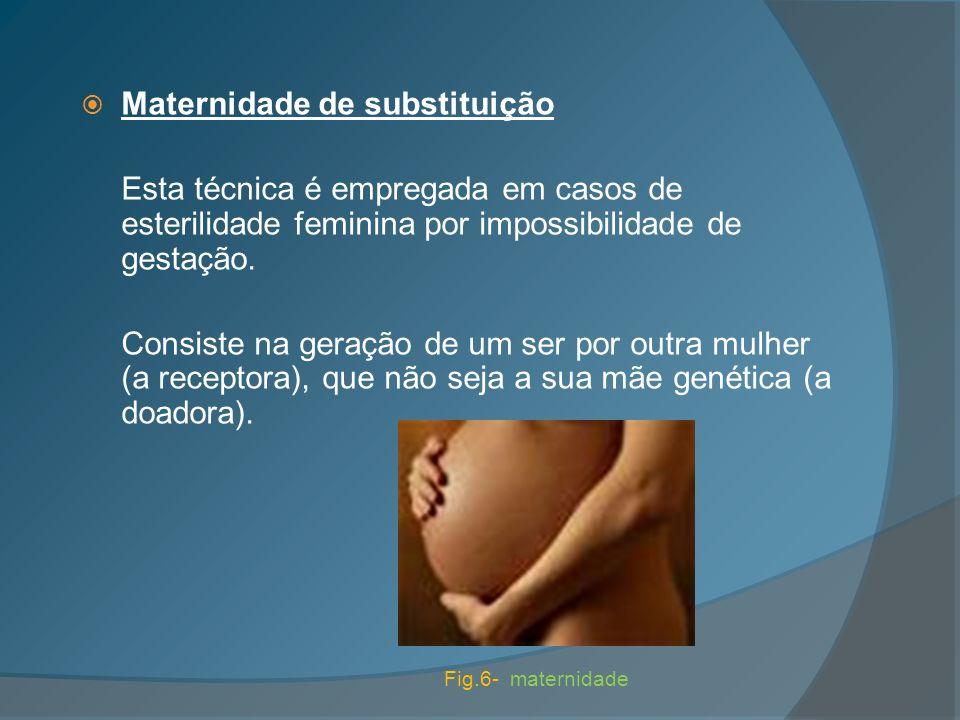 Maternidade de substituição Esta técnica é empregada em casos de esterilidade feminina por impossibilidade de gestação. Consiste na geração de um ser