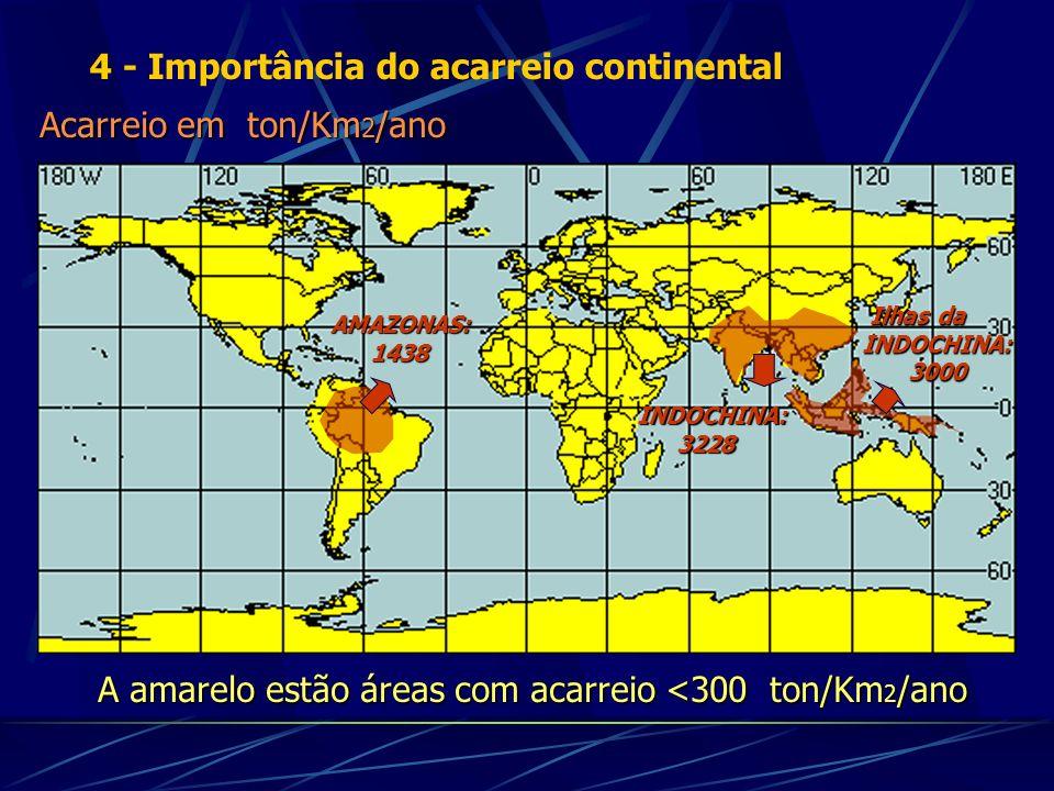Acarreio em ton/Km 2 /ano A amarelo estão áreas com acarreio <300 ton/Km 2 /ano AMAZONAS: 1438 INDOCHINA: 3228 Ilhas da INDOCHINA: 3000 4 - Importânci