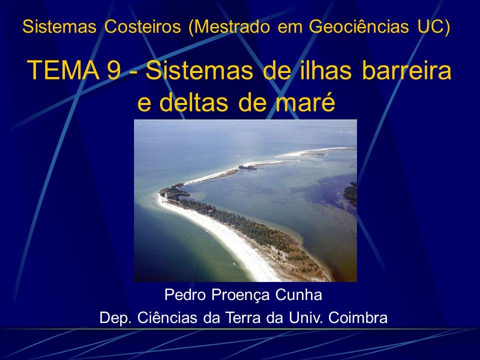 1 - INTRODUÇÃO 4 - MORFOLOGIA E DINÂMICA DE 4 - MORFOLOGIA E DINÂMICA DE DELTAS DE FLUXO 2 - 2 - ELEMENTOS MORFOLÓGICOS DO SISTEMA 5 - LEQUES DE GALGAMENTO 3 - MORFOLOGIA E DINÂMICA DE 3 - MORFOLOGIA E DINÂMICA DE DELTAS DE REFLUXO TEMA 9 - Sistemas de ilhas barreira e deltas de maré