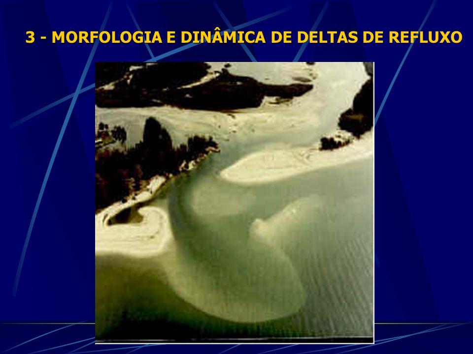 3 - MORFOLOGIA E DINÂMICA DE 3 - MORFOLOGIA E DINÂMICA DE DELTAS DE REFLUXO