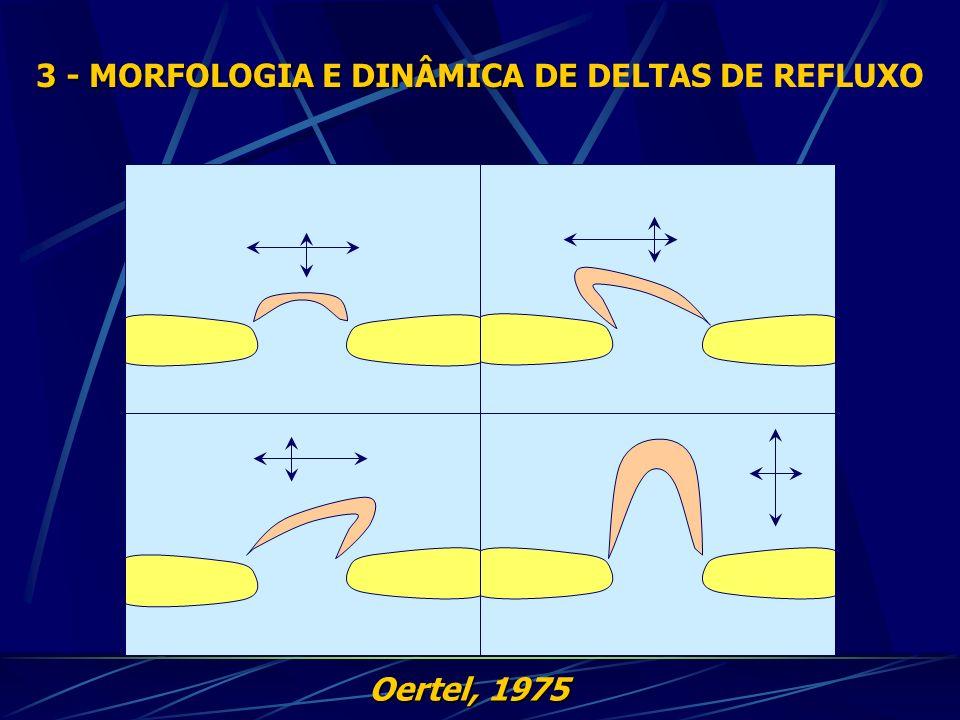 Oertel, 1975