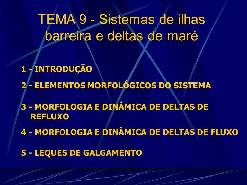 1 - INTRODUÇÃO 4 - MORFOLOGIA E DINÂMICA DE 4 - MORFOLOGIA E DINÂMICA DE DELTAS DE FLUXO 2 - 2 - ELEMENTOS MORFOLÓGICOS DO SISTEMA 5 - LEQUES DE GALGA