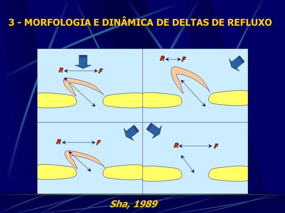 3 - MORFOLOGIA E DINÂMICA DE 3 - MORFOLOGIA E DINÂMICA DE DELTAS DE REFLUXO Sha, 1989 R F R F R F R F