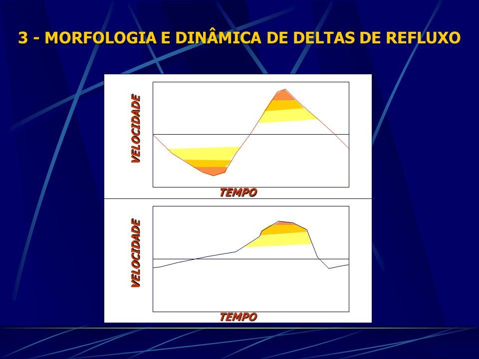 3 - MORFOLOGIA E DINÂMICA DE 3 - MORFOLOGIA E DINÂMICA DE DELTAS DE REFLUXO VELOCIDADE TEMPO VELOCIDADE TEMPO