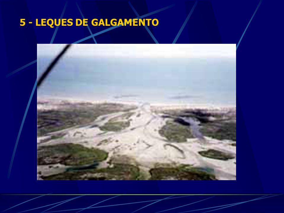5 - LEQUES DE GALGAMENTO