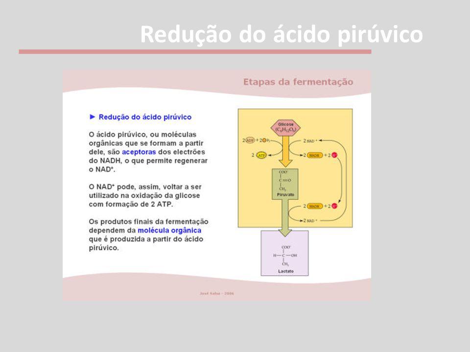 Redução do ácido pirúvico