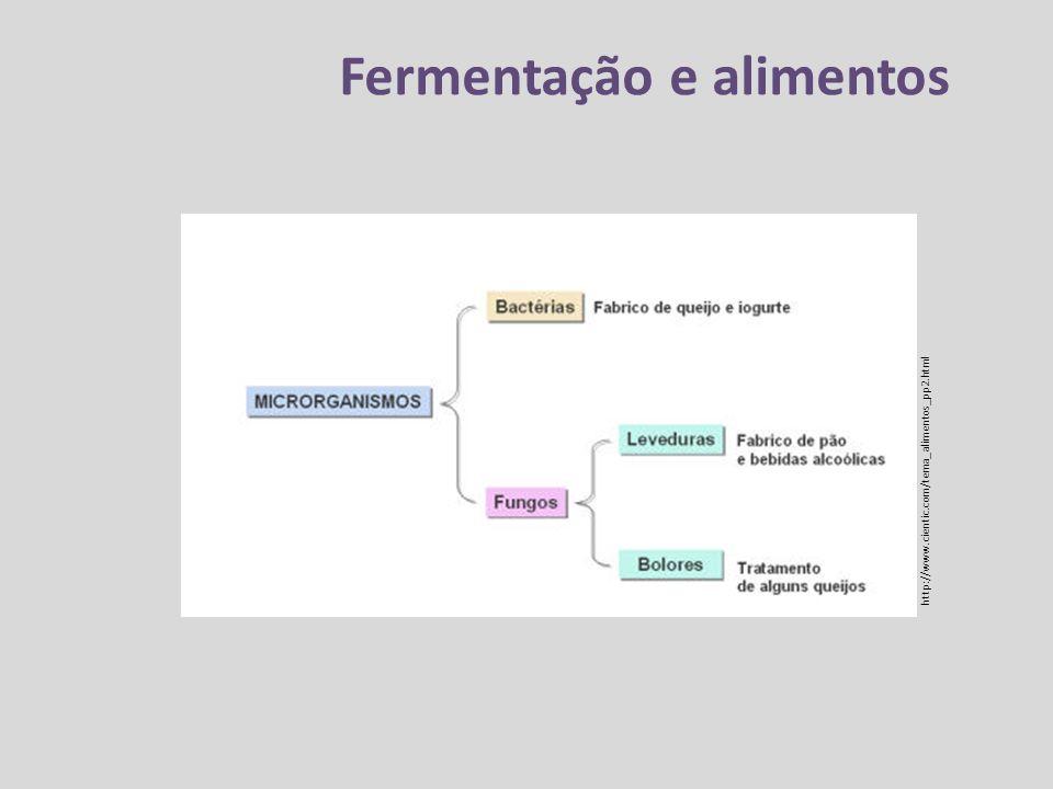 Fermentação e alimentos http://www.cientic.com/tema_alimentos_pp2.html