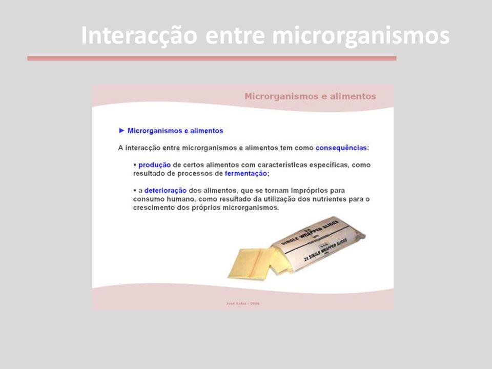 Interacção entre microrganismos