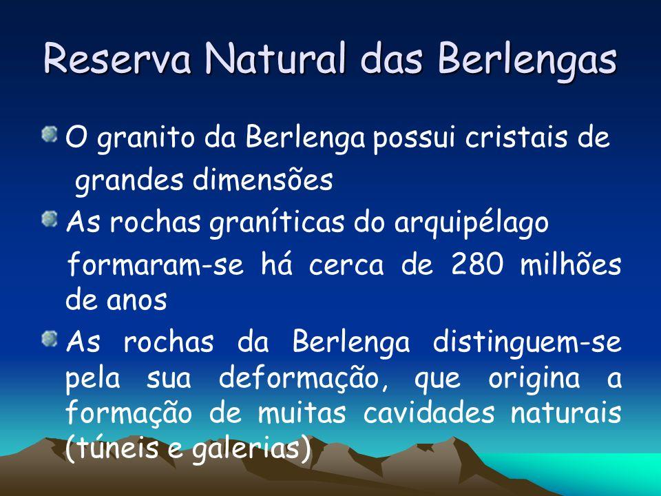 Reserva Natural das Berlengas O granito da Berlenga possui cristais de grandes dimensões As rochas graníticas do arquipélago formaram-se há cerca de 2