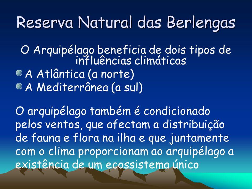 Reserva Natural das Berlengas O Arquipélago beneficia de dois tipos de influências climáticas A Atlântica (a norte) A Mediterrânea (a sul) O arquipéla