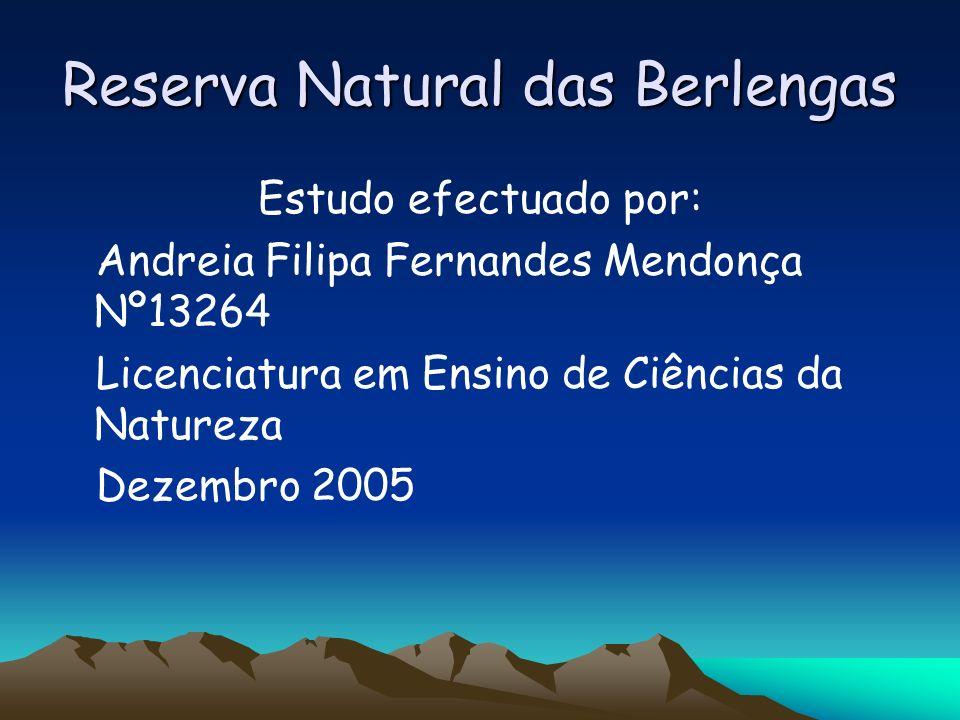 Reserva Natural das Berlengas Estudo efectuado por: Andreia Filipa Fernandes Mendonça Nº13264 Licenciatura em Ensino de Ciências da Natureza Dezembro