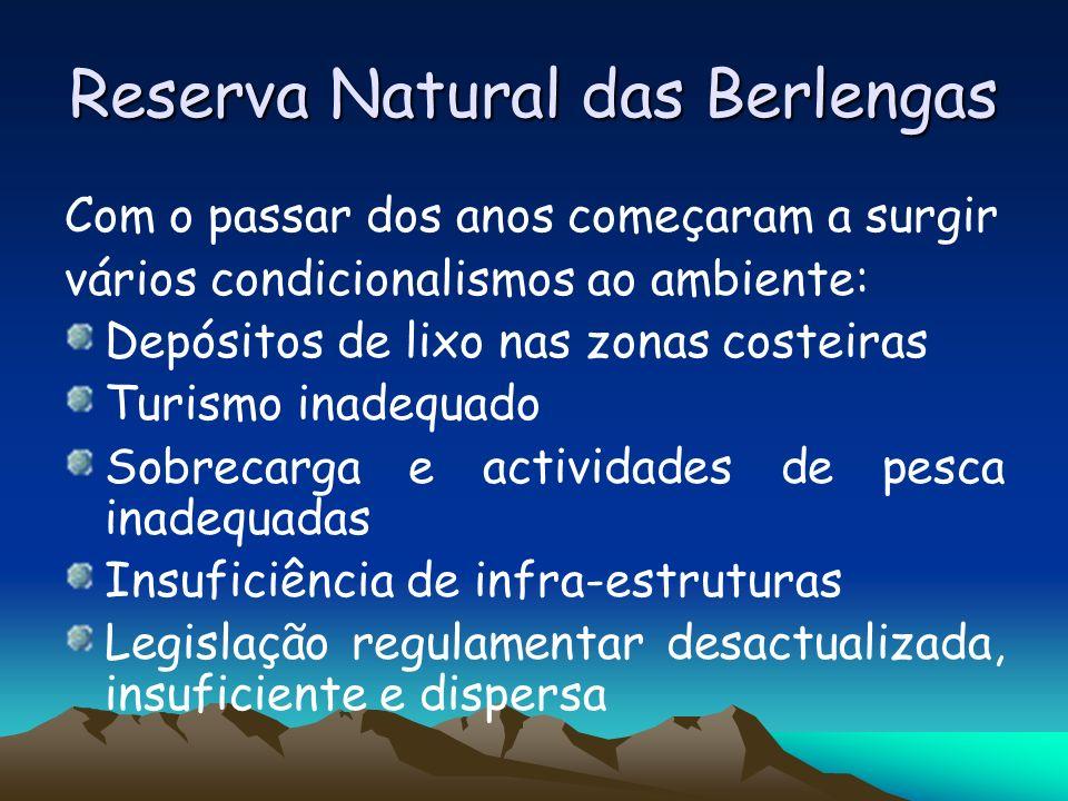 Reserva Natural das Berlengas Com o passar dos anos começaram a surgir vários condicionalismos ao ambiente: Depósitos de lixo nas zonas costeiras Turi