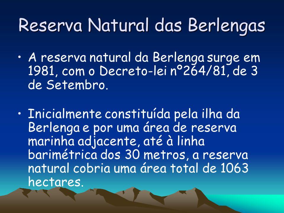 Reserva Natural das Berlengas A reserva natural da Berlenga surge em 1981, com o Decreto-lei nº264/81, de 3 de Setembro. Inicialmente constituída pela