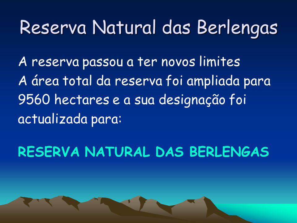 Reserva Natural das Berlengas A reserva passou a ter novos limites A área total da reserva foi ampliada para 9560 hectares e a sua designação foi actu