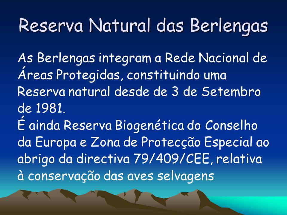 Reserva Natural das Berlengas As Berlengas integram a Rede Nacional de Áreas Protegidas, constituindo uma Reserva natural desde de 3 de Setembro de 19