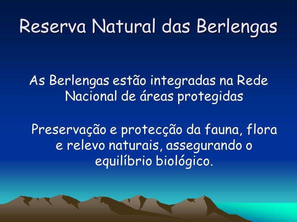 Reserva Natural das Berlengas Cinco zonas de utilização específica Áreas de recreio Áreas do Farol Áreas de reserva parcial Áreas de reserva integral Áreas de reserva marítima