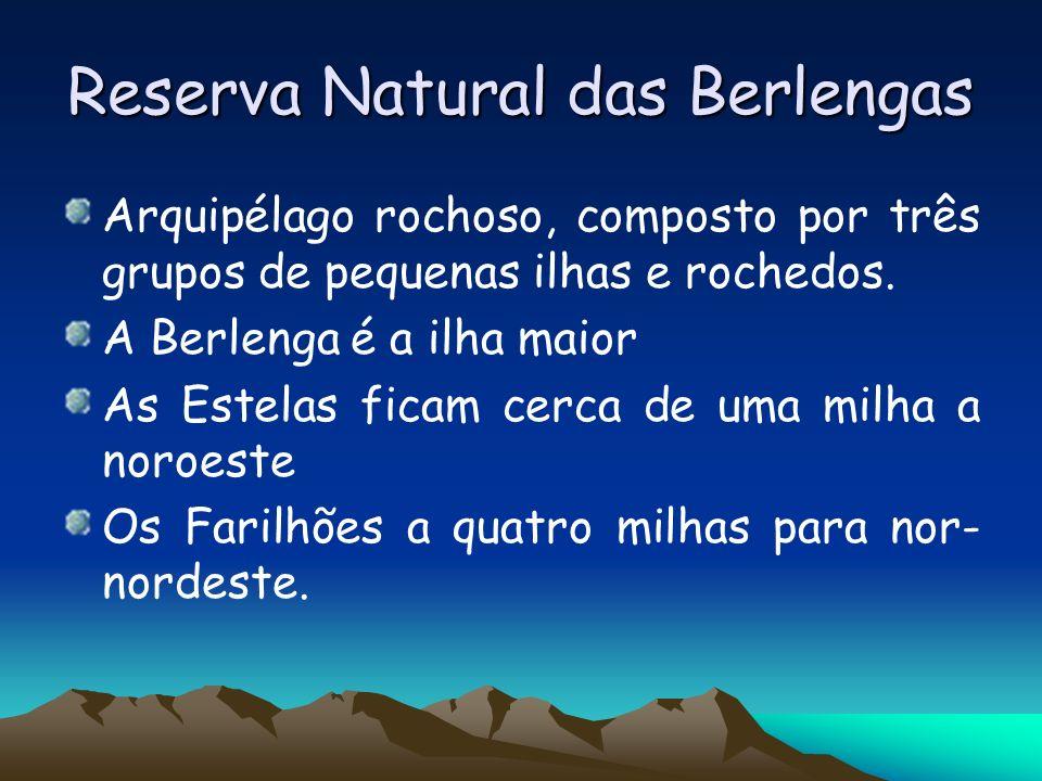 Reserva Natural das Berlengas Arquipélago rochoso, composto por três grupos de pequenas ilhas e rochedos. A Berlenga é a ilha maior As Estelas ficam c