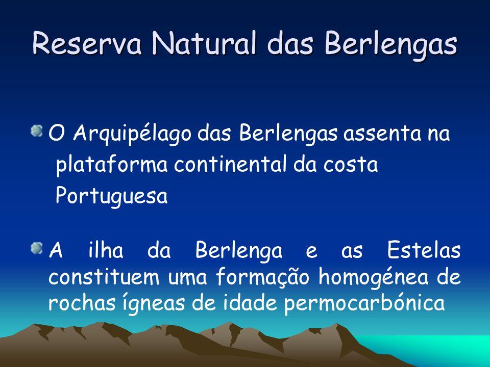 Reserva Natural das Berlengas O Arquipélago das Berlengas assenta na plataforma continental da costa Portuguesa A ilha da Berlenga e as Estelas consti