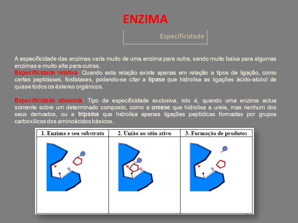 Especificidade ENZIMA A especificidade das enzimas varia muito de uma enzima para outra, sendo muito baixa para algumas enzimas e muito alta para outr