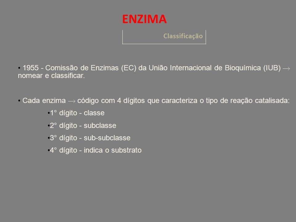 Classificação ENZIMA 1955 - Comissão de Enzimas (EC) da União Internacional de Bioquímica (IUB) nomear e classificar.